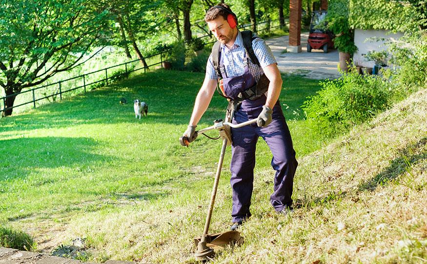 Vårda trädgården